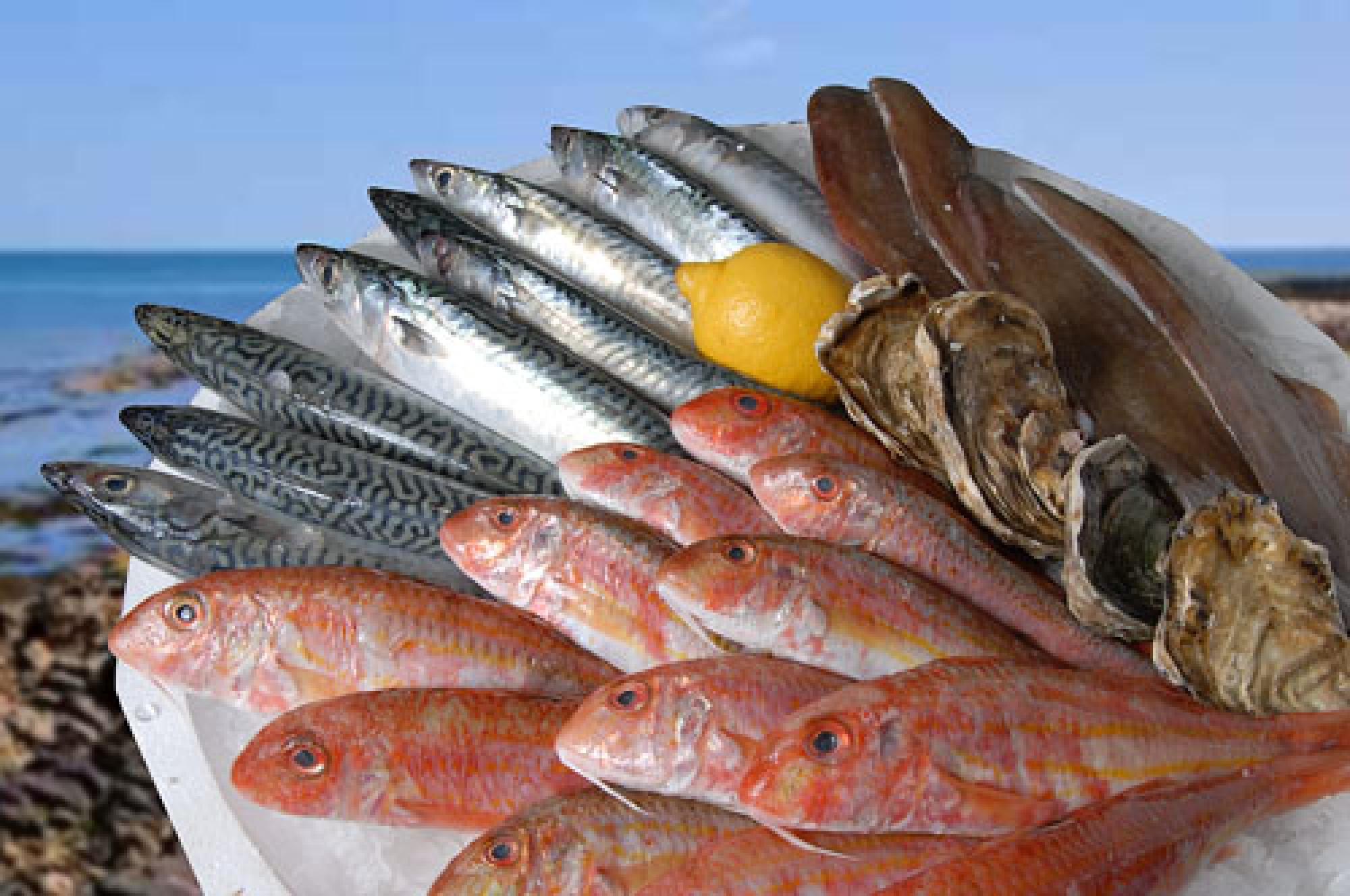 poissonnerie chez jeff du poissons frais pour le d jeuner de midi toota cassis. Black Bedroom Furniture Sets. Home Design Ideas